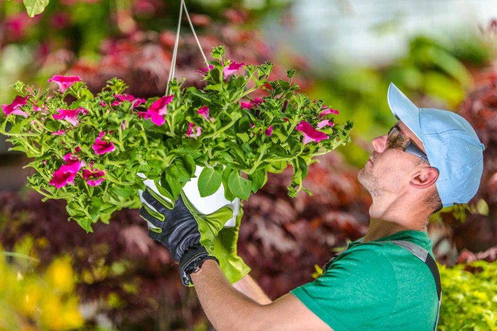 статика для вакансий 2 - Садовник на 1 день в неделю
