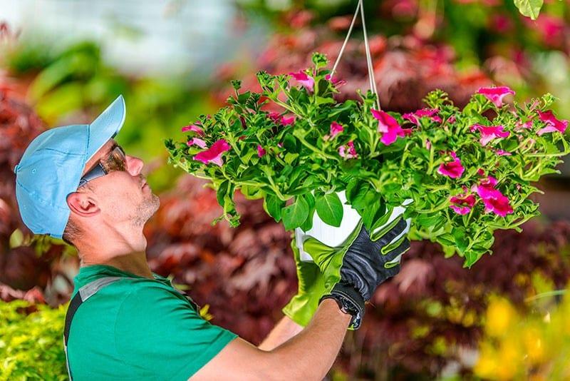 работа садовником киев - Садовник